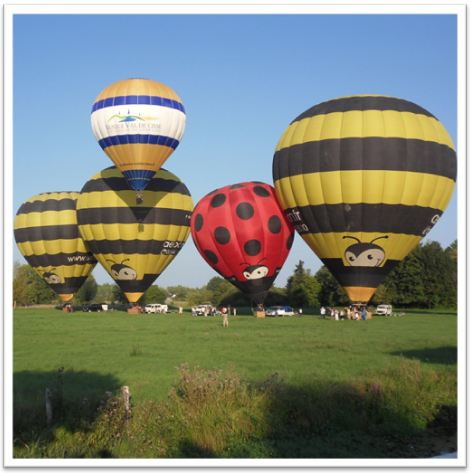 montgolfiere occasion annonce